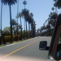 Beverly-Hills-(11)
